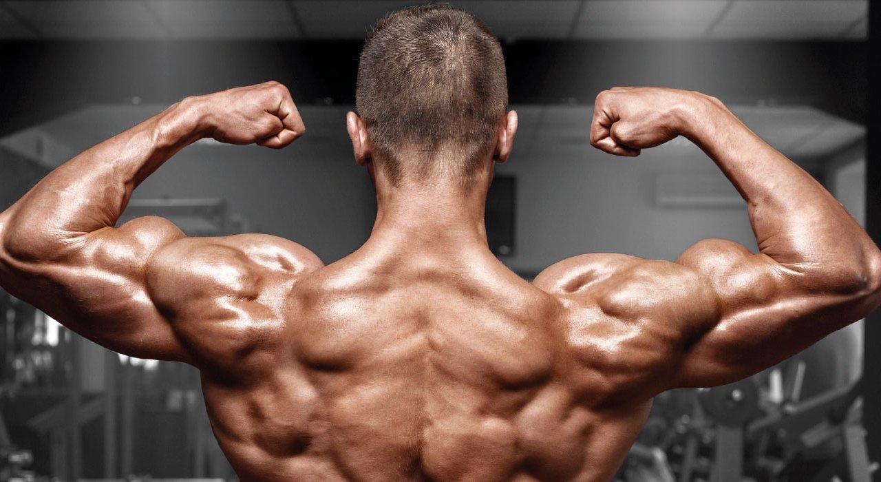 Definizione muscolare - Low carb - Low fat